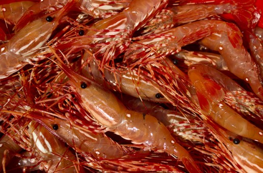 How to Clean Spot Prawns (or other shrimp)